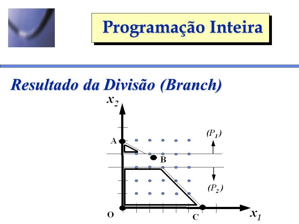 Programação Inteira Resultado da Divisão (Branch)