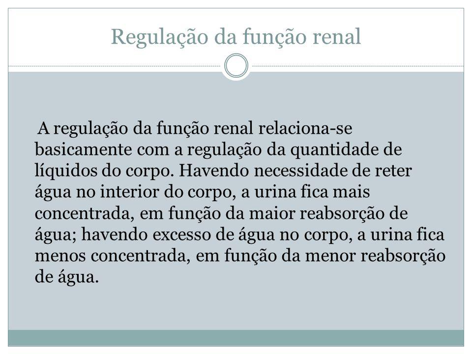 Regulação da função renal A regulação da função renal relaciona-se basicamente com a regulação da quantidade de líquidos do corpo. Havendo necessidade