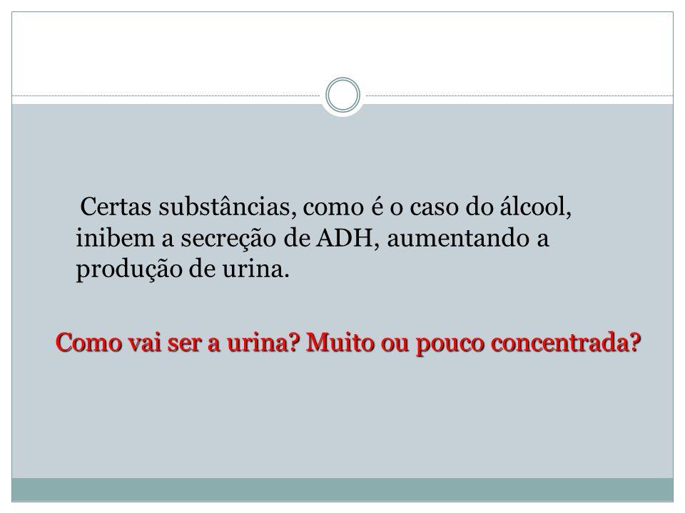 Certas substâncias, como é o caso do álcool, inibem a secreção de ADH, aumentando a produção de urina.