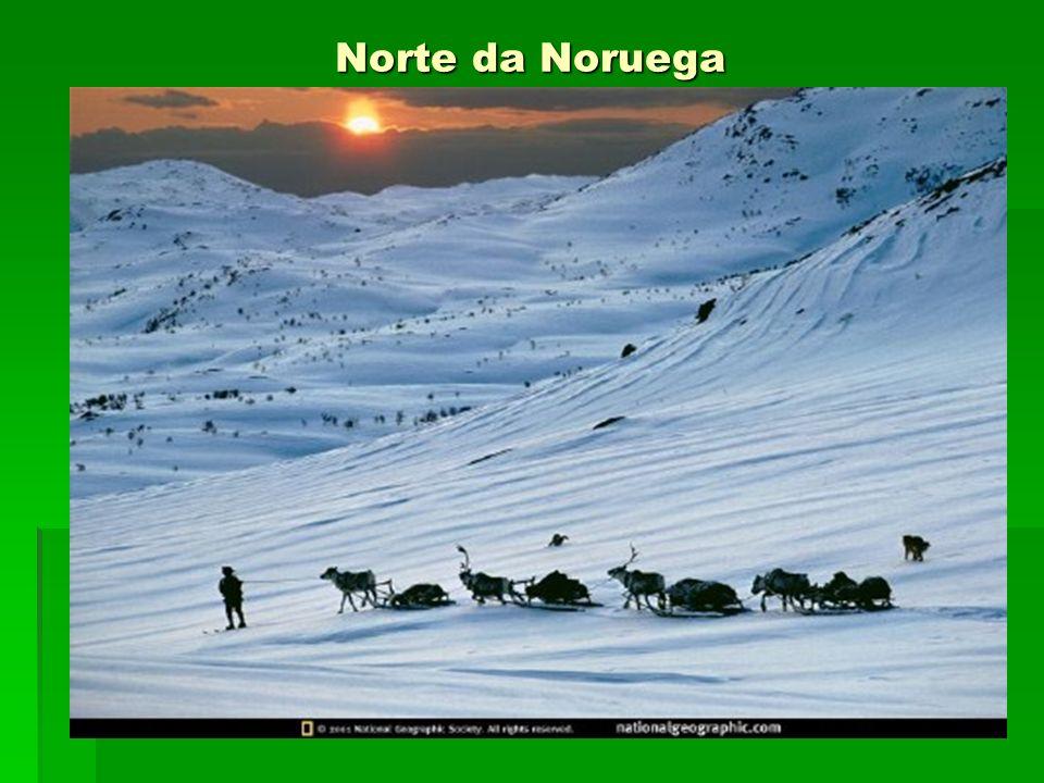 Norte da Noruega