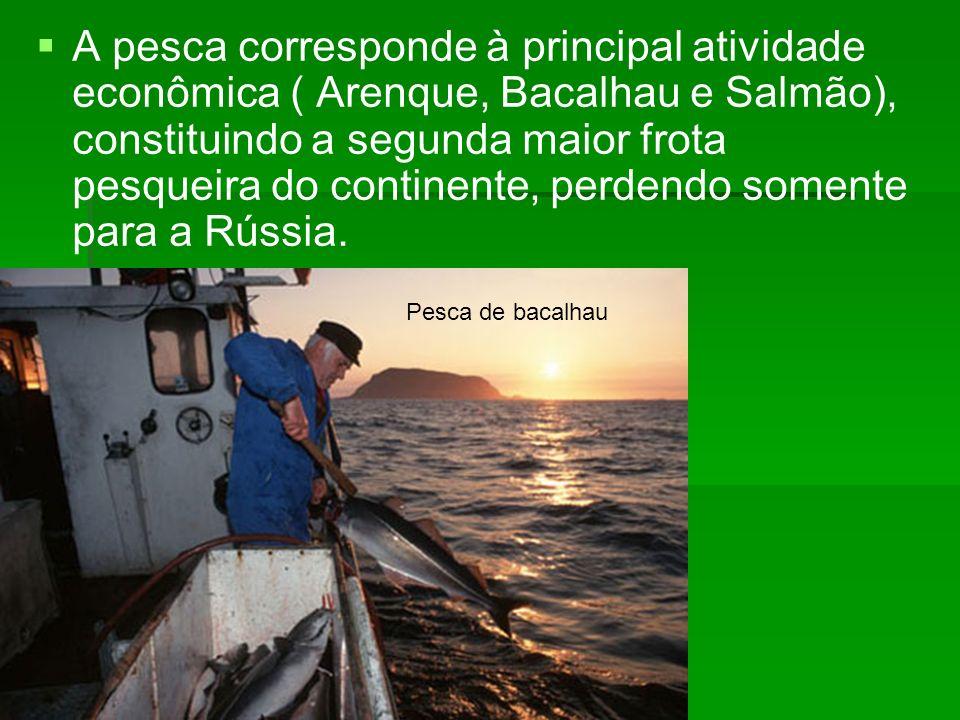 A pesca corresponde à principal atividade econômica ( Arenque, Bacalhau e Salmão), constituindo a segunda maior frota pesqueira do continente, perdend