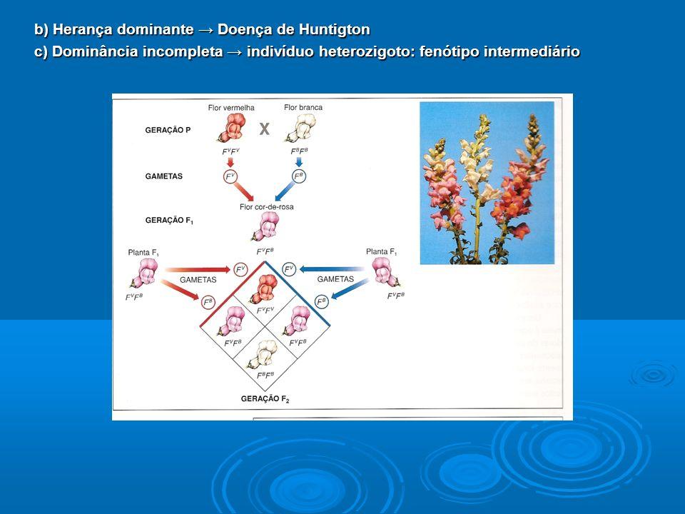 b) Herança dominante Doença de Huntigton c) Dominância incompleta indivíduo heterozigoto: fenótipo intermediário