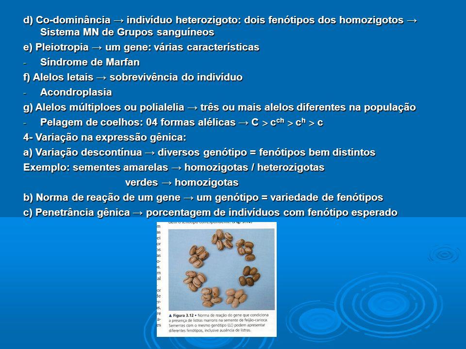 d) Co-dominância indivíduo heterozigoto: dois fenótipos dos homozigotos Sistema MN de Grupos sanguíneos e) Pleiotropia um gene: várias características - Síndrome de Marfan f) Alelos letais sobrevivência do indivíduo - Acondroplasia g) Alelos múltiploes ou polialelia três ou mais alelos diferentes na população - Pelagem de coelhos: 04 formas alélicas C ˃ c ch ˃ c h ˃ c 4- Variação na expressão gênica: a) Variação descontínua diversos genótipo = fenótipos bem distintos Exemplo: sementes amarelas homozigotas / heterozigotas verdes homozigotas verdes homozigotas b) Norma de reação de um gene um genótipo = variedade de fenótipos c) Penetrância gênica porcentagem de indivíduos com fenótipo esperado