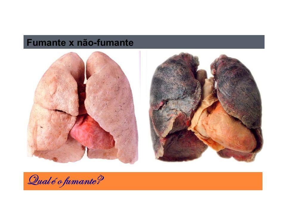 Fumante x não-fumante Qual é o fumante?