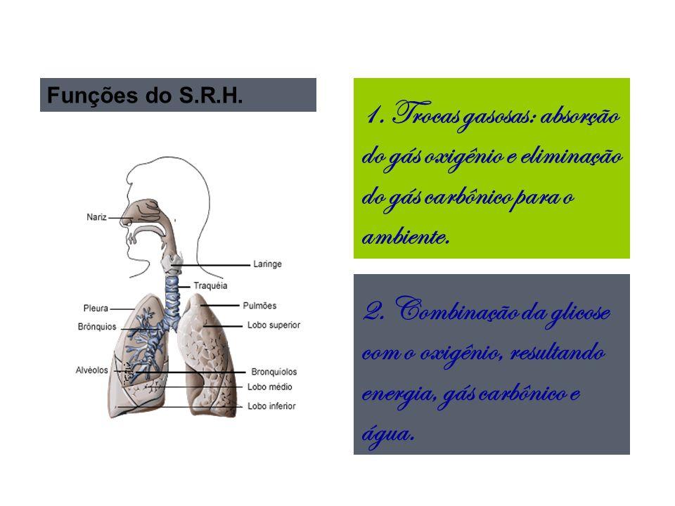 Funções do S.R.H.2.