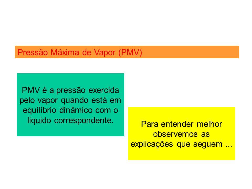 Pressão Máxima de Vapor (PMV) PMV é a pressão exercida pelo vapor quando está em equilíbrio dinâmico com o liquido correspondente. Para entender melho