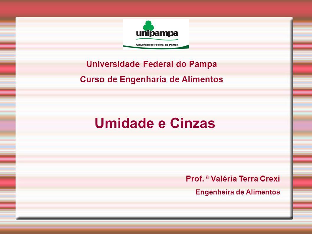 Universidade Federal do Pampa Curso de Engenharia de Alimentos Umidade e Cinzas Prof. ª Valéria Terra Crexi Engenheira de Alimentos