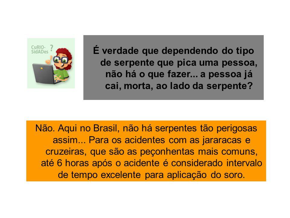 Não. Aqui no Brasil, não há serpentes tão perigosas assim... Para os acidentes com as jararacas e cruzeiras, que são as peçonhentas mais comuns, até 6