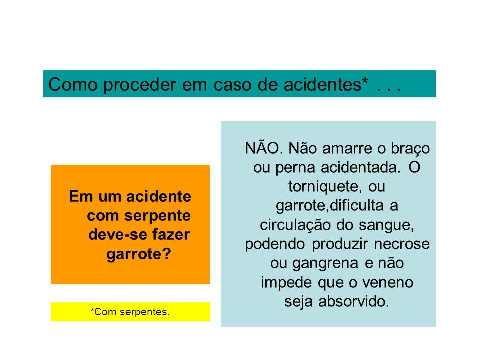 Como proceder em caso de acidentes*... Em um acidente com serpente deve-se fazer garrote? NÃO. Não amarre o braço ou perna acidentada. O torniquete, o