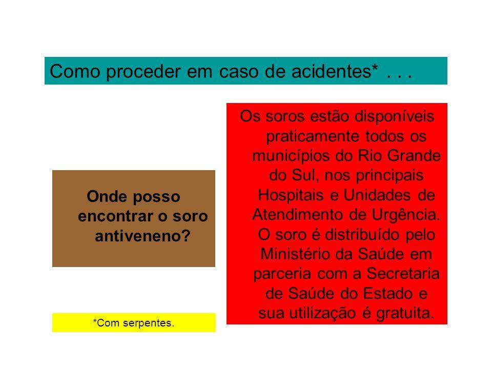 Como proceder em caso de acidentes*... Onde posso encontrar o soro antiveneno? Os soros estão disponíveis praticamente todos os municípios do Rio Gran