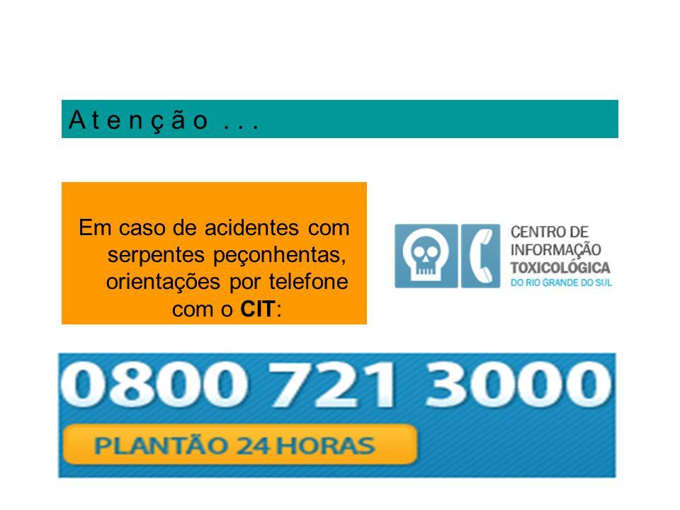 A t e n ç ã o... Em caso de acidentes com serpentes peçonhentas, orientações por telefone com o CIT: