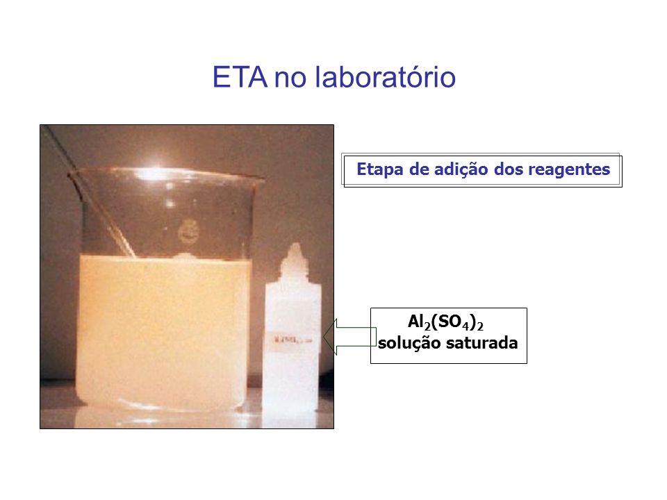 ETA no laboratório Al 2 (SO 4 ) 2 solução saturada Etapa de adição dos reagentes