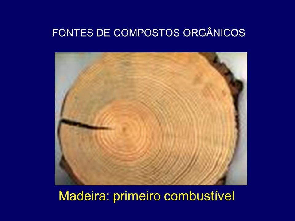 FONTES DE COMPOSTOS ORGÂNICOS Madeira: primeiro combustível