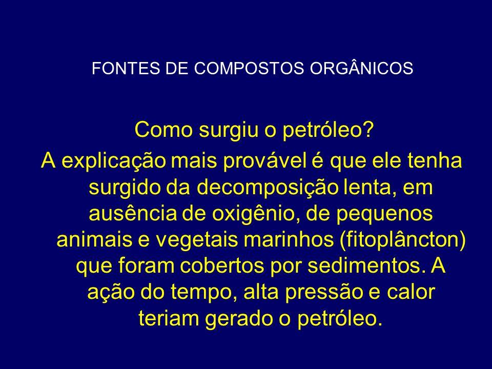 FONTES DE COMPOSTOS ORGÂNICOS Carvão mineral: o carbono é combustível Tem origem na decomposição de vegetais (florestas) que foram soterrados.