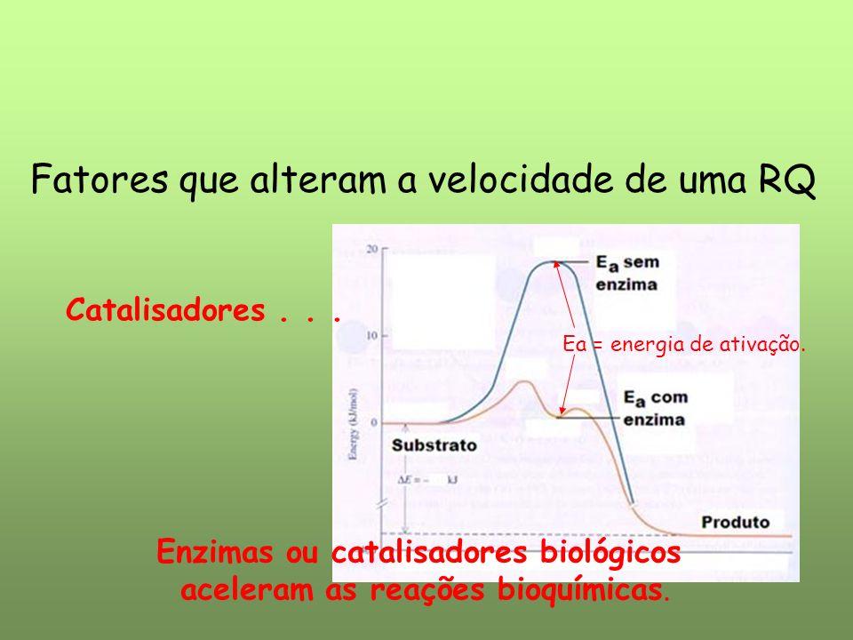 Fatores que alteram a velocidade de uma RQ Catalisadores... Enzimas ou catalisadores biológicos aceleram as reações bioquímicas. Ea = energia de ativa
