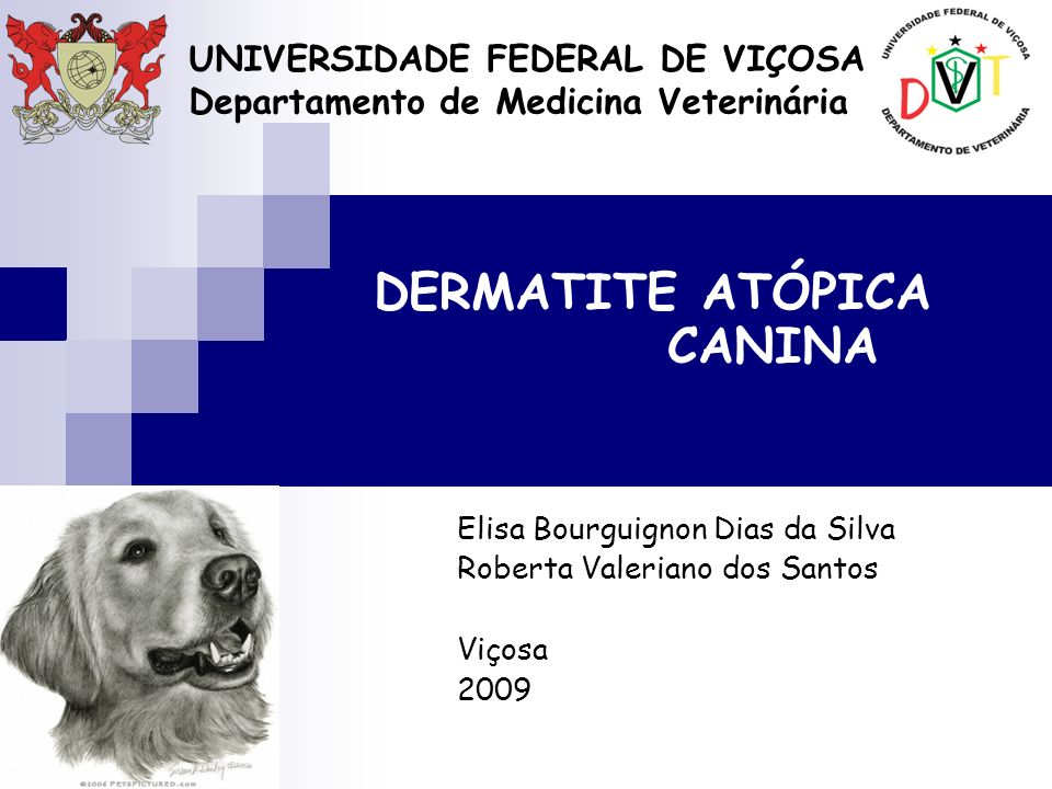 UNIVERSIDADE FEDERAL DE VIÇOSA Departamento de Medicina Veterinária DERMATITE ATÓPICA CANINA Elisa Bourguignon Dias da Silva Roberta Valeriano dos San