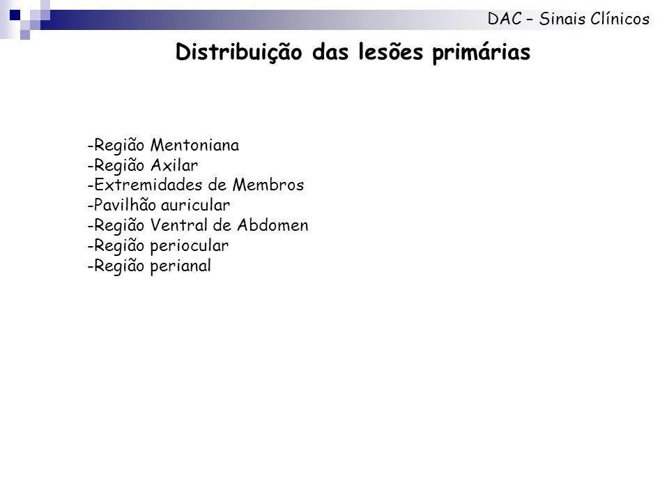 Distribuição das lesões primárias DAC – Sinais Clínicos -Região Mentoniana -Região Axilar -Extremidades de Membros -Pavilhão auricular -Região Ventral