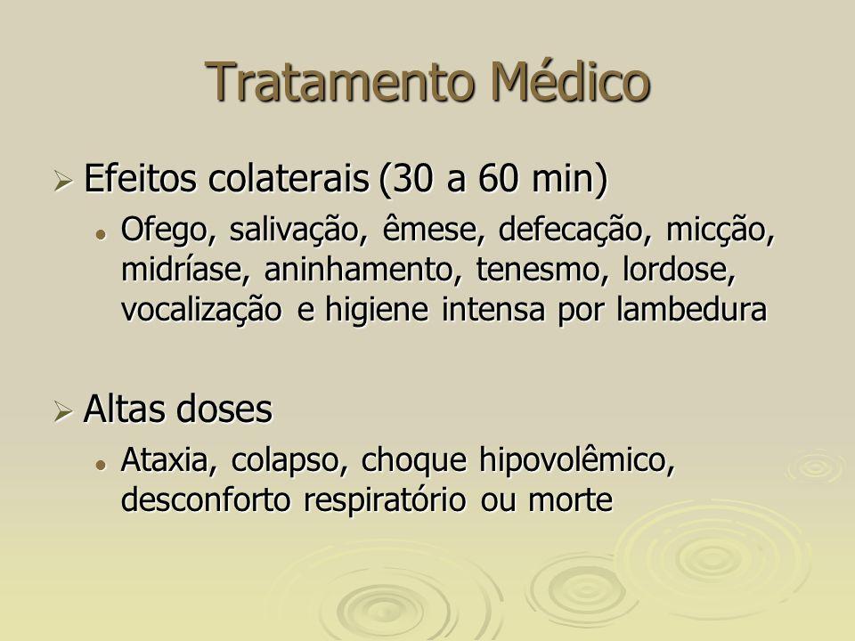 Tratamento Médico Efeitos colaterais (30 a 60 min) Efeitos colaterais (30 a 60 min) Ofego, salivação, êmese, defecação, micção, midríase, aninhamento, tenesmo, lordose, vocalização e higiene intensa por lambedura Ofego, salivação, êmese, defecação, micção, midríase, aninhamento, tenesmo, lordose, vocalização e higiene intensa por lambedura Altas doses Altas doses Ataxia, colapso, choque hipovolêmico, desconforto respiratório ou morte Ataxia, colapso, choque hipovolêmico, desconforto respiratório ou morte