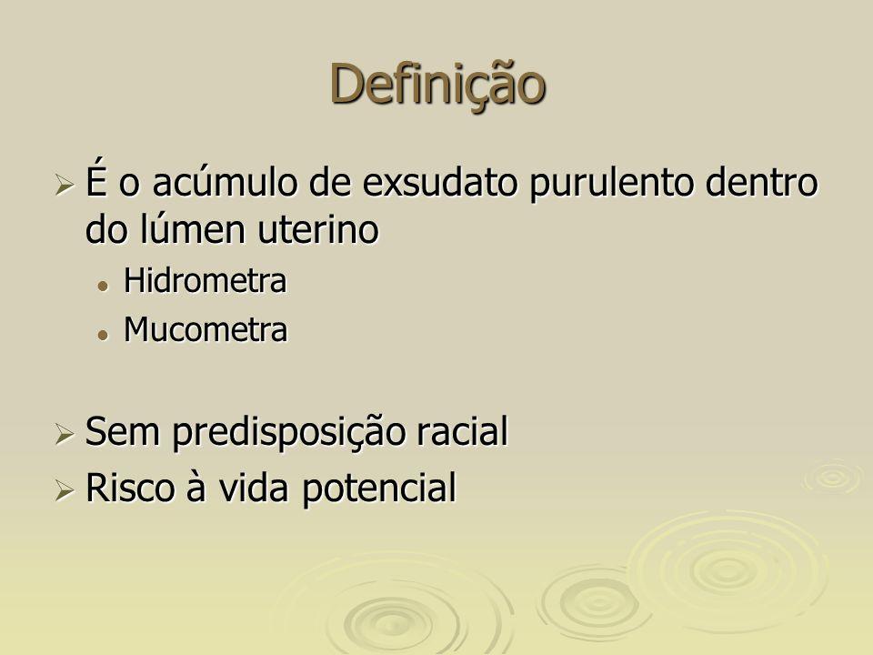 Definição É o acúmulo de exsudato purulento dentro do lúmen uterino É o acúmulo de exsudato purulento dentro do lúmen uterino Hidrometra Hidrometra Mucometra Mucometra Sem predisposição racial Sem predisposição racial Risco à vida potencial Risco à vida potencial