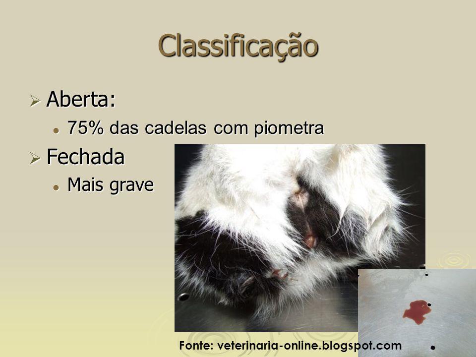 Classificação Aberta: Aberta: 75% das cadelas com piometra 75% das cadelas com piometra Fechada Fechada Mais grave Mais grave Fonte: veterinaria-online.blogspot.com