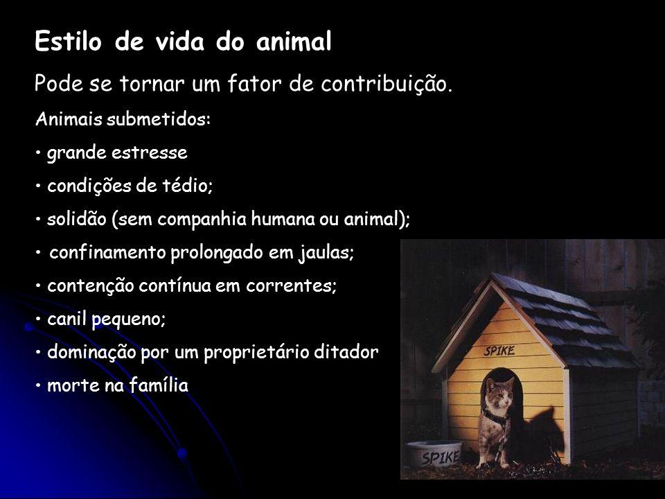 Estilo de vida do animal Pode se tornar um fator de contribuição. Animais submetidos: grande estresse condições de tédio; solidão (sem companhia human