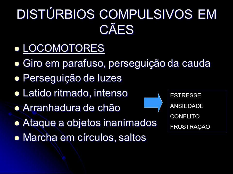 DISTÚRBIOS COMPULSIVOS EM CÃES LOCOMOTORES LOCOMOTORES Giro em parafuso, perseguição da cauda Giro em parafuso, perseguição da cauda Perseguição de lu