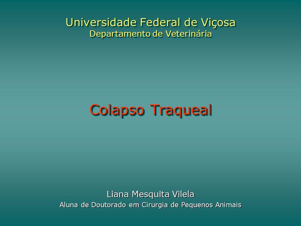 Universidade Federal de Viçosa Departamento de Veterinária Colapso Traqueal Liana Mesquita Vilela Aluna de Doutorado em Cirurgia de Pequenos Animais