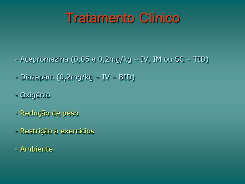 Tratamento Clínico - Acepromazina (0,05 a 0,2mg/kg – IV, IM ou SC – TID) - Diazepam (0,2mg/kg – IV – BID) - Oxigênio - Redução de peso - Restrição à exercícios - Ambiente - Acepromazina (0,05 a 0,2mg/kg – IV, IM ou SC – TID) - Diazepam (0,2mg/kg – IV – BID) - Oxigênio - Redução de peso - Restrição à exercícios - Ambiente