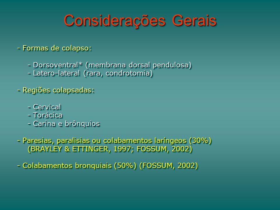 Considerações Gerais - Formas de colapso: - Dorsoventral* (membrana dorsal pendulosa) - Latero-lateral (rara, condrotomia) - Regiões colapsadas: - Cervical - Torácica - Carina e brônquios - Paresias, paralisias ou colabamentos laríngeos (30%) (BRAYLEY & ETTINGER, 1997; FOSSUM, 2002) - Colabamentos bronquiais (50%) (FOSSUM, 2002) - Formas de colapso: - Dorsoventral* (membrana dorsal pendulosa) - Latero-lateral (rara, condrotomia) - Regiões colapsadas: - Cervical - Torácica - Carina e brônquios - Paresias, paralisias ou colabamentos laríngeos (30%) (BRAYLEY & ETTINGER, 1997; FOSSUM, 2002) - Colabamentos bronquiais (50%) (FOSSUM, 2002)