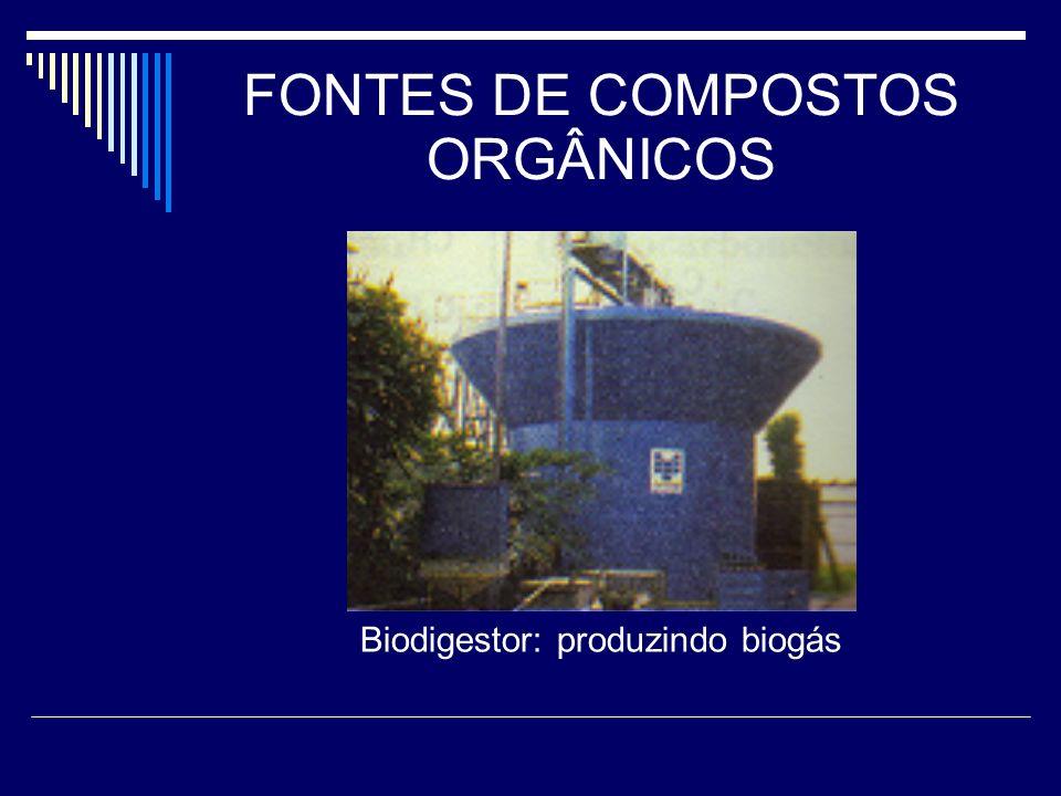 FONTES DE COMPOSTOS ORGÂNICOS Biodigestor: produzindo biogás