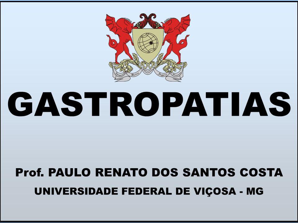 Prof. PAULO RENATO DOS SANTOS COSTA UNIVERSIDADE FEDERAL DE VIÇOSA - MG GASTROPATIAS