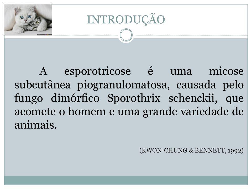 ASPECTOS CLÍNICOS sbdv.com.br pgodoy.com