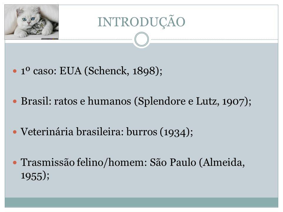 INTRODUÇÃO 1º caso: EUA (Schenck, 1898); Brasil: ratos e humanos (Splendore e Lutz, 1907); Veterinária brasileira: burros (1934); Trasmissão felino/homem: São Paulo (Almeida, 1955);
