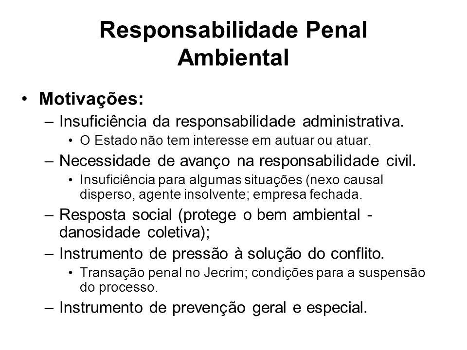 Responsabilidade Penal Ambiental Motivações: –Insuficiência da responsabilidade administrativa. O Estado não tem interesse em autuar ou atuar. –Necess