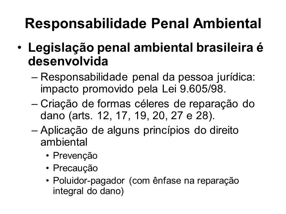 Responsabilidade Penal Ambiental Legislação penal ambiental brasileira é desenvolvida –Responsabilidade penal da pessoa jurídica: impacto promovido pe