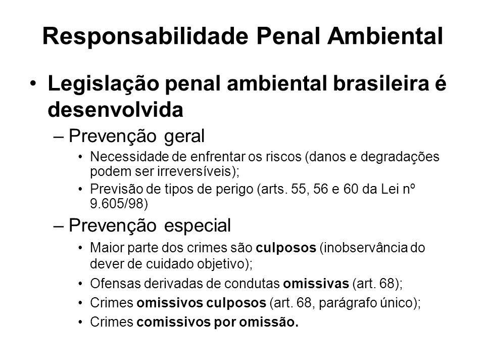 Responsabilidade Penal Ambiental Legislação penal ambiental brasileira é desenvolvida –Prevenção geral Necessidade de enfrentar os riscos (danos e deg