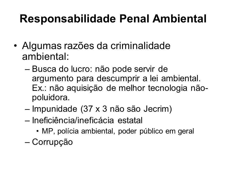 Responsabilidade Penal Ambiental Algumas razões da criminalidade ambiental: –Busca do lucro: não pode servir de argumento para descumprir a lei ambien