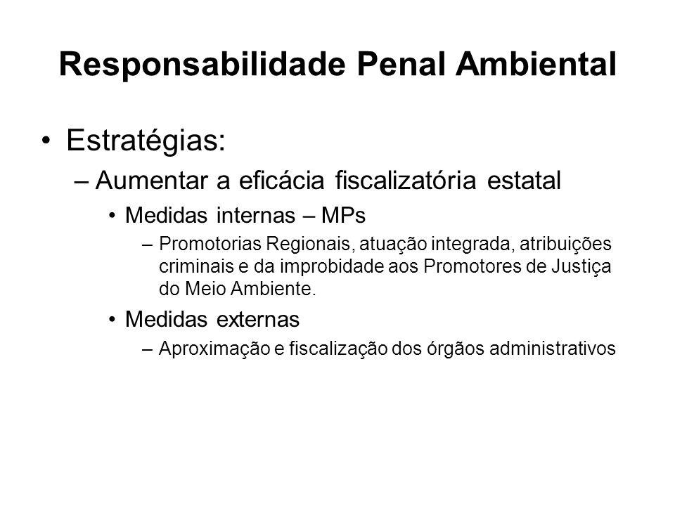 Responsabilidade Penal Ambiental Estratégias: –Aumentar a eficácia fiscalizatória estatal Medidas internas – MPs –Promotorias Regionais, atuação integ