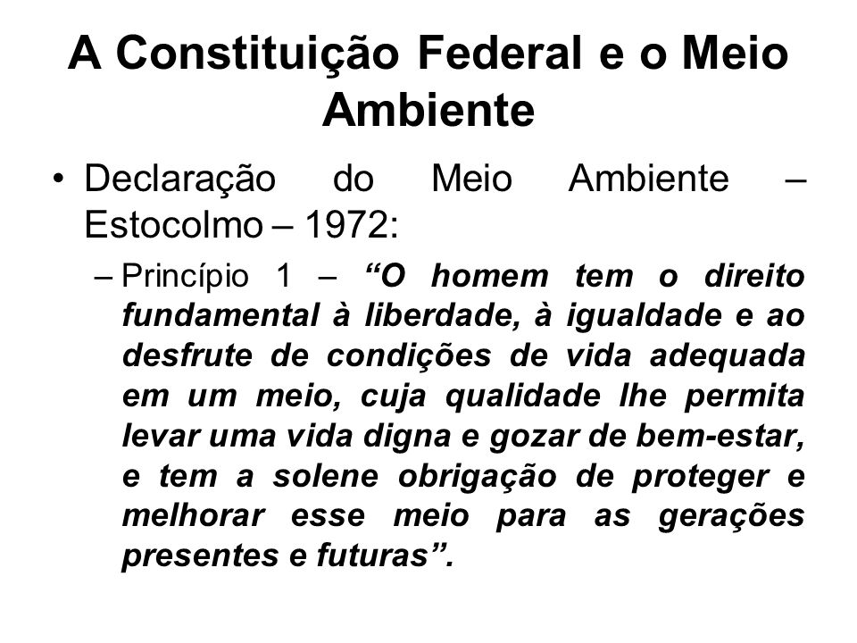 A Constituição Federal e o Meio Ambiente Declaração do Meio Ambiente – Estocolmo – 1972: –Princípio 1 – O homem tem o direito fundamental à liberdade,