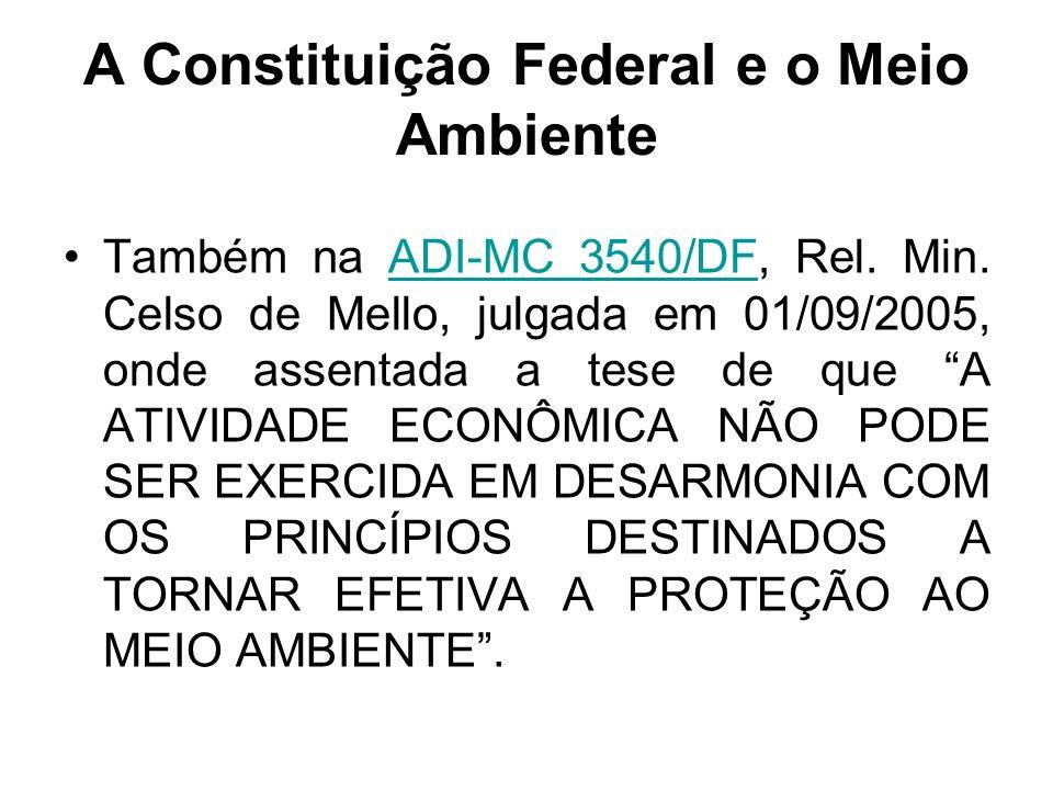 A Constituição Federal e o Meio Ambiente Também na ADI-MC 3540/DF, Rel. Min. Celso de Mello, julgada em 01/09/2005, onde assentada a tese de que A ATI
