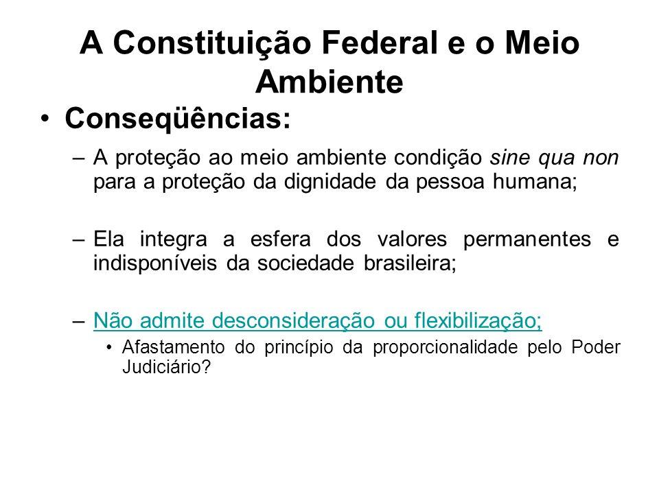 A Constituição Federal e o Meio Ambiente Conseqüências: –A proteção ao meio ambiente condição sine qua non para a proteção da dignidade da pessoa huma