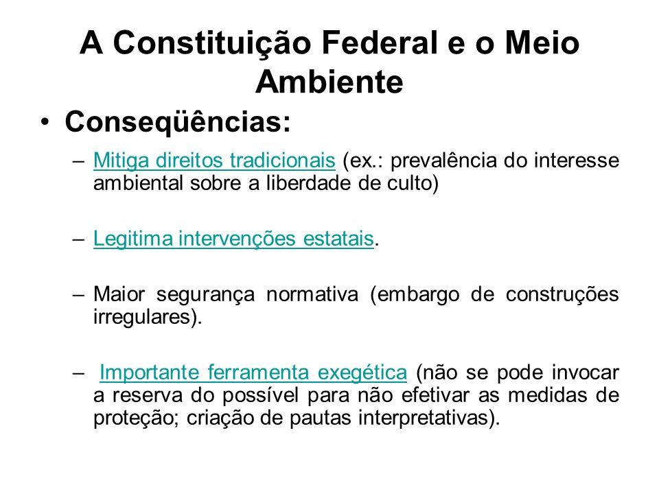 A Constituição Federal e o Meio Ambiente Conseqüências: –Mitiga direitos tradicionais (ex.: prevalência do interesse ambiental sobre a liberdade de cu