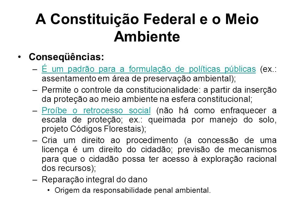 A Constituição Federal e o Meio Ambiente Conseqüências: –É um padrão para a formulação de políticas públicas (ex.: assentamento em área de preservação