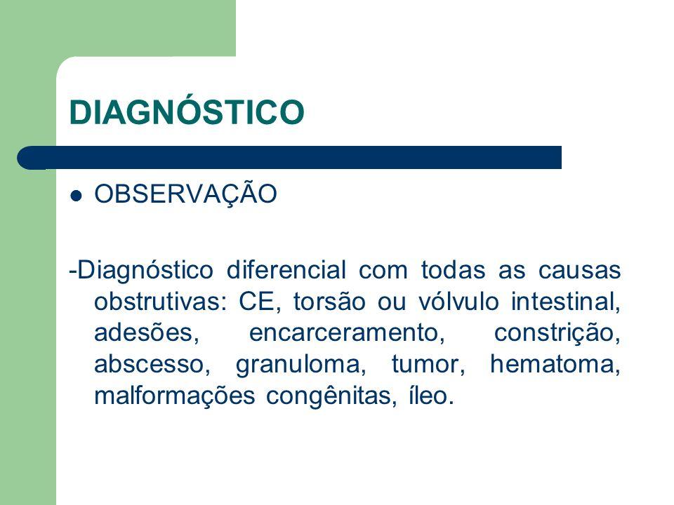 DIAGNÓSTICO OBSERVAÇÃO -Diagnóstico diferencial com todas as causas obstrutivas: CE, torsão ou vólvulo intestinal, adesões, encarceramento, constrição