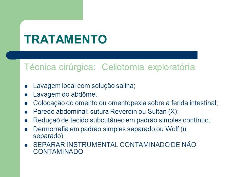 TRATAMENTO Técnica cirúrgica: Celiotomia exploratória Lavagem local com solução salina; Lavagem do abdôme; Colocação do omento ou omentopexia sobre a