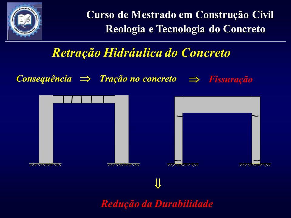 Retração Hidráulica do Concreto Curso de Mestrado em Construção Civil Reologia e Tecnologia do Concreto Redução da Durabilidade Fissuração Consequênci