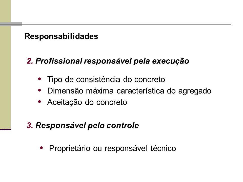 2. Profissional responsável pela execução Responsabilidades 3. Responsável pelo controle Proprietário ou responsável técnico Tipo de consistência do c