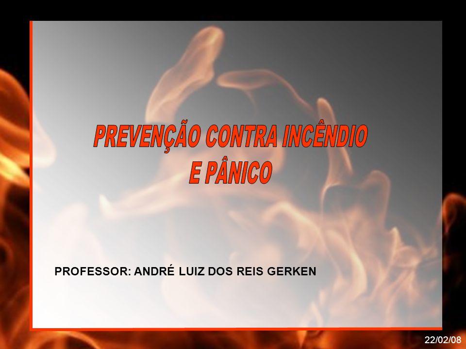 22/02/08 PROFESSOR: ANDRÉ LUIZ DOS REIS GERKEN