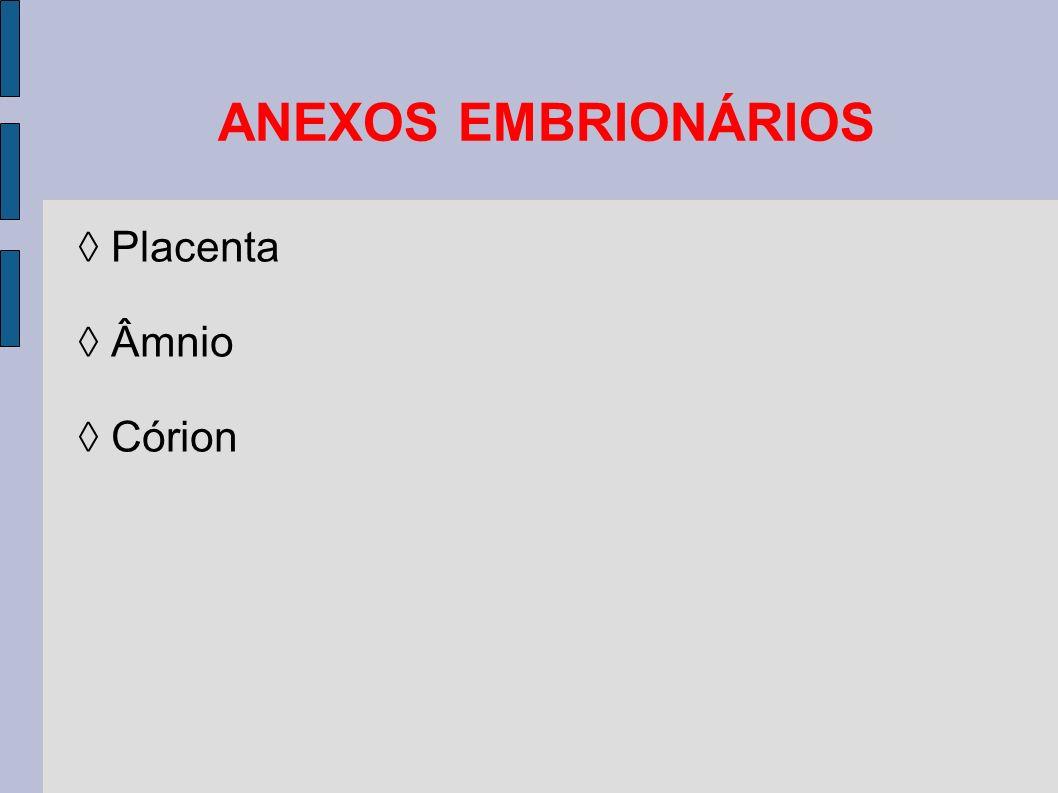 Placenta Âmnio Córion