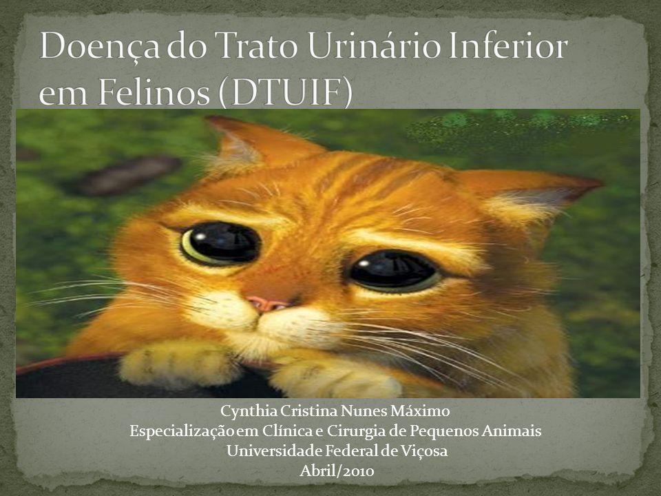 Cynthia Cristina Nunes Máximo Especialização em Clínica e Cirurgia de Pequenos Animais Universidade Federal de Viçosa Abril/2010